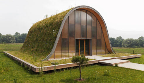 Examples of Living Green Roofs- Grass Turf and Succulent Sedums
