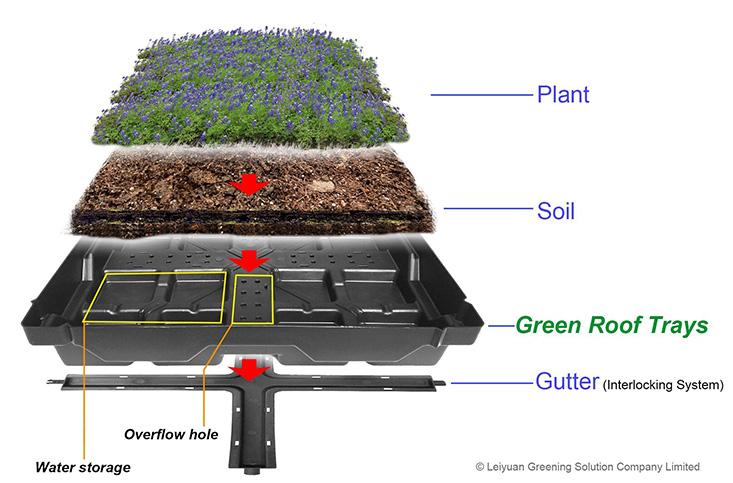 Groene dakladen, modulaire dakmodule systeem, groene dak modules, groene daken